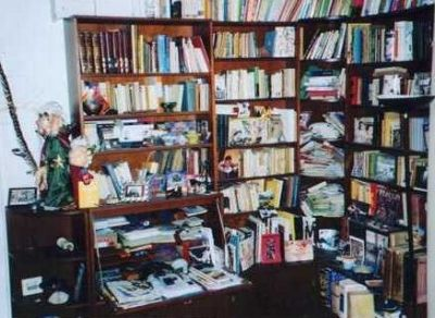 Vends grande BIBLIOTH�QUE modulable, bon �tat, sur Paris 13