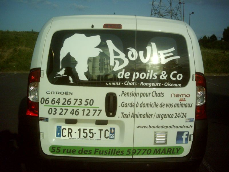 Taxi pour animaux