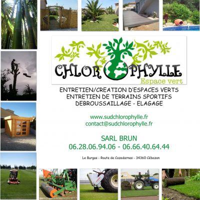 Creation entretien des espaces verts d broussaillage for Diplome espace vert